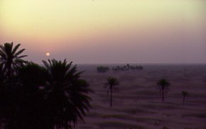 Desert sun-rise