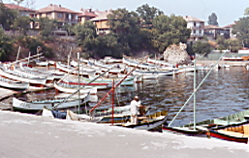 Harbour at Sunny Beach