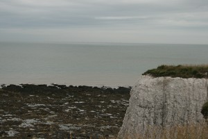 Chalk cliff and foreshore